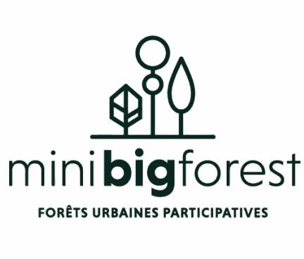 association MiniBigForest
